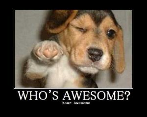 I am awesome!